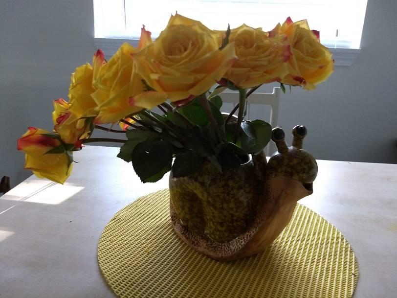 Snail Flowers 1